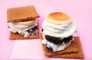 Frozen S'mores | Culinary Cool
