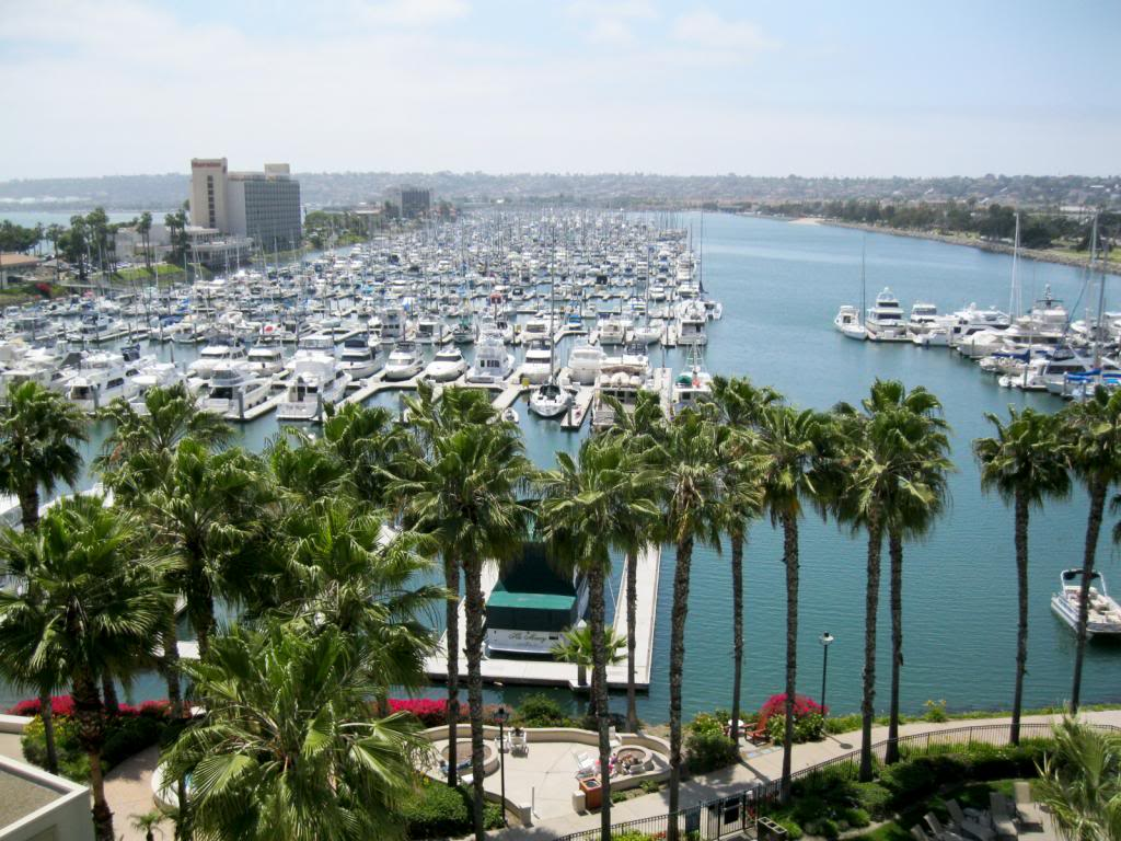 Things to do in San Diego | Culinary Cool