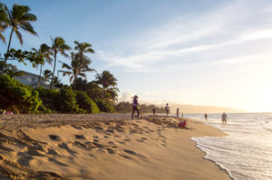 Laniakea Beach North Shore Oahu | Culinary Cool
