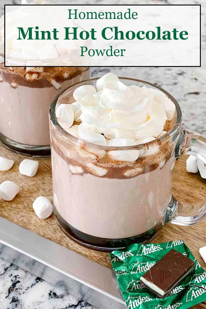Homemade Mint Hot Chocolate Powder Mix | Culinary Cool www.culinary-cool.com